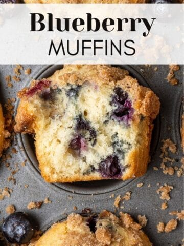 dairy free blueberry muffins web story cover with text overlay