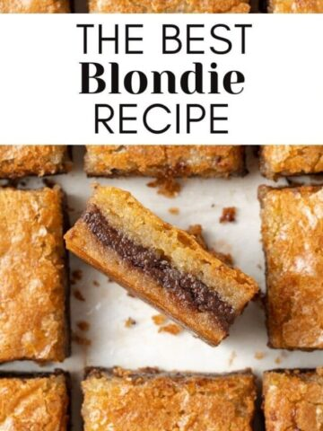blondies sliced with text overlay for web story